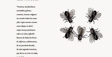 las moscas Antonio Machado